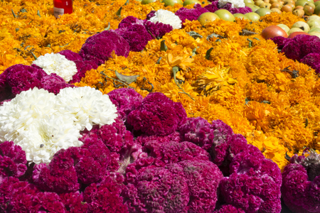 The day of the dead is a mexican celebration that honors the ancestors during the November 2, coinciding with the catholic celebration of the day of the faithful departed. Stock Photo