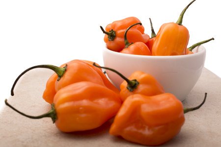 vegetarian food: Approach and details a set of chiles habaneros. Typical of mérida, yucatán. is a pepper very spicy and powerful taste.
