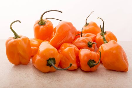 exotic food: Approach and details a set of chiles habaneros. Typical of m�rida, yucat�n. is a pepper very spicy and powerful taste. Stock Photo