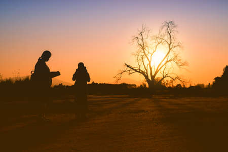Silhouette of boys and girls are standing by to review their lesson after class in the open space with dead tree and sunset background;