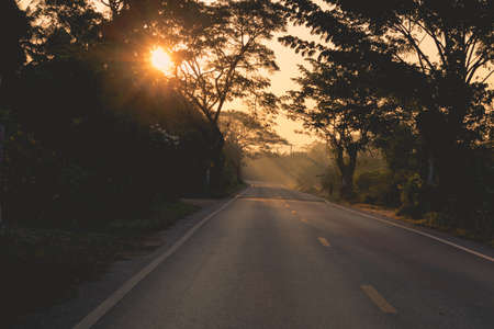 Sunrise over the tree and asphalt road.Silhouette of the tree and mist.