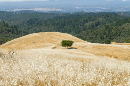 Pepperwood Preserve is a 3117 acre conservation area and nature preserve.