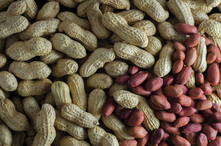 earthnuts: Raw peanuts in their shells an without shells Stock Photo