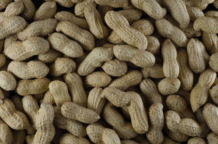 Raw peanuts in their shells Stock Photo