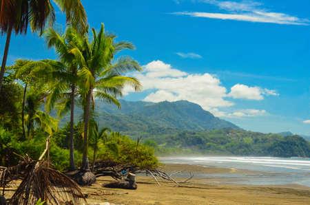 tropical  forest: Beach in Costa Rica