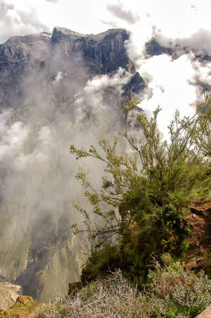 andes: The Andes in Peru