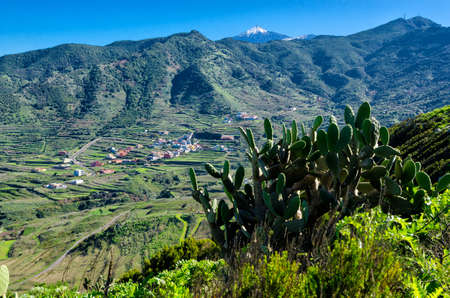 Valley with Teide on Tenerife