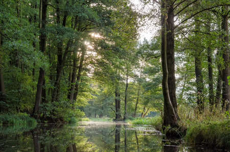 reclusion: Spreewald in Germany close to Berlin