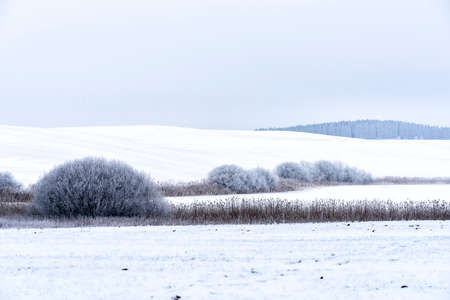 snowy landscape in winter in Masuria in eastern Poland