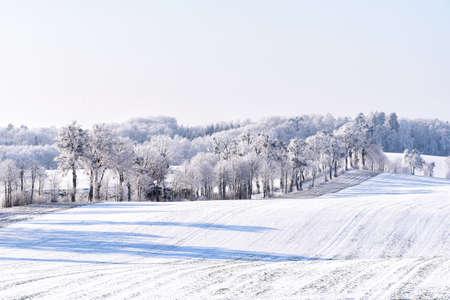 snowy landscape in winter in Masuria in eastern Poland Banco de Imagens - 117204224
