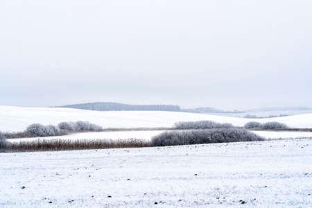 snowy landscape in winter in Masuria in eastern Poland Banco de Imagens - 117204230