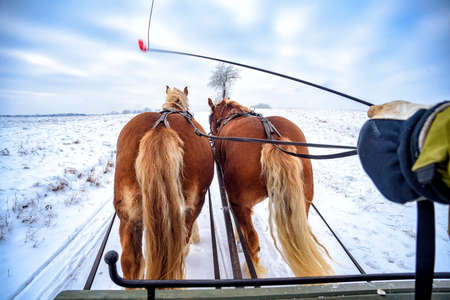 sleigh ride in the snow in Masuria in Poland