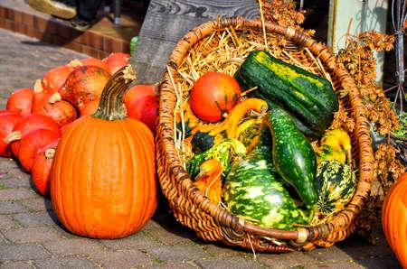 pumpkins on a market in Spreewald, Germany, in autumn