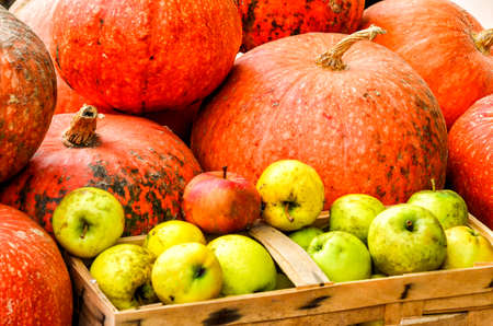 pumpkins and apples on a market in Spreewald, Germany, in autumn
