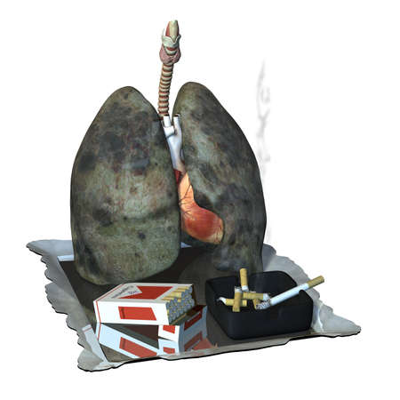 Lungs on drugs, with a pack of cigarettes, an ashtray, a smoking cigarette, butts, and mirror.  Isolated on a white background.