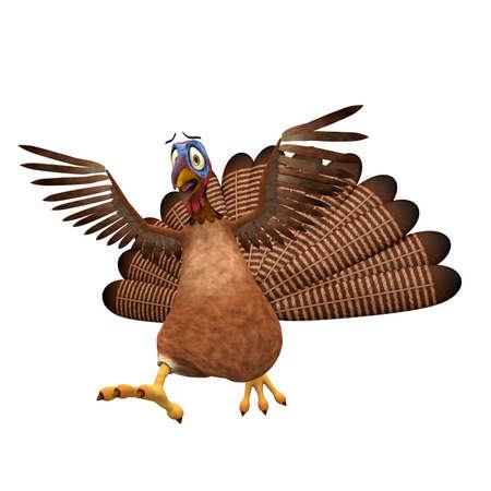 Scared Toon Turkey: A Karikaturtruthahn erschrocken mit seinen Flügeln in der Luft. Isoliert auf einem weißen Hintergrund. Standard-Bild