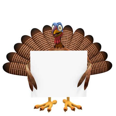Toon Turkey Anmeldung: Eine lächelnde Karikaturtruthahn die eine leere Zeichen. Isoliert auf einem weißen Hintergrund. Standard-Bild - 16166003