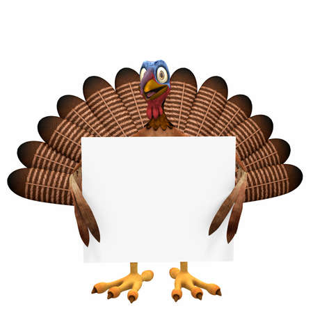 Toon Turkey Sign: A smiling cartoon turkey holding a blank sign. Isolated on a white background.