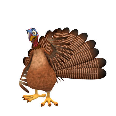 thanksgiving greeting: Happy Toon Turkey: A smiling cartoon turkey waving at you. Isolated on a white background.