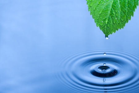 surface view: Green leaf with splashing water drops. Stock Photo