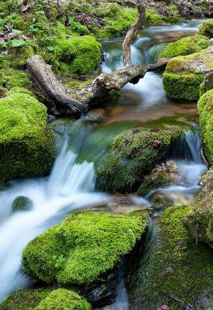 岩の上を流れる水は、せせらぎの苔で覆われて。 写真素材