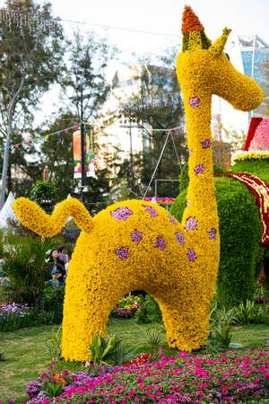 Giraffe made of flowers 에디토리얼