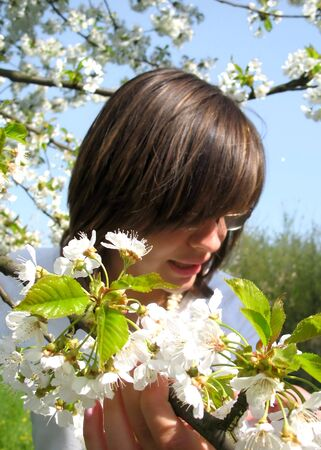 cherrytree: Girl in cherry-tree orchad lokking on flowers Stock Photo