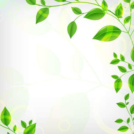 ochtend dauw: Eco achtergrond, vector afbeelding Stock Illustratie