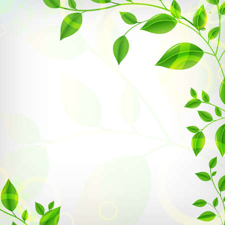 morning dew: Eco Background, Vector Illustration