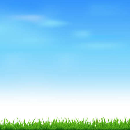 grass vector: Landscape With Grass, Vector Illustration