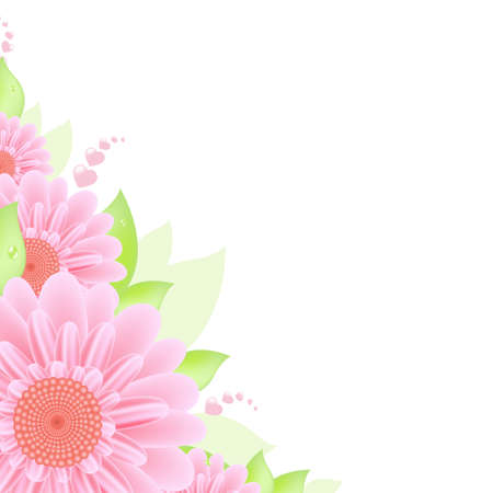 closeup of pink daisy with: Gerbers Border, Vector Illustration  Illustration