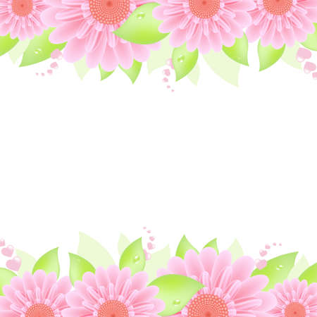 gerber flowers: Pink Gerbers, Isolated On White Background, Vector Illustration Illustration