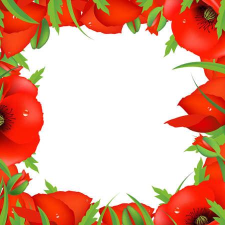 poppy field: Marco Rojo amapola, ilustraci�n vectorial Vectores