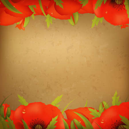 Vintage Red Poppy Border, Illustration  Stock Vector - 12076158