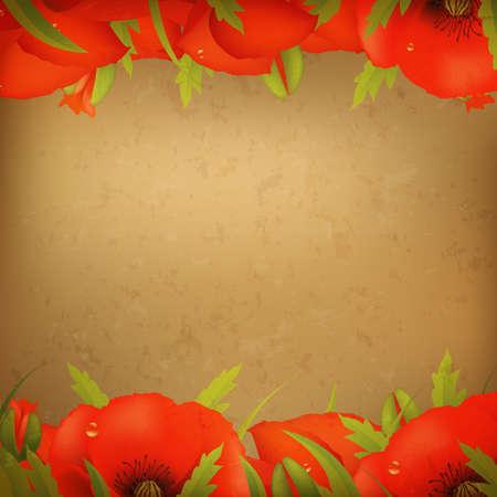 retrospect: Vintage Red Poppy Border, Illustration