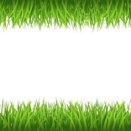 Grass Border, Isolated On White Background, Vector Illustration  Illustration