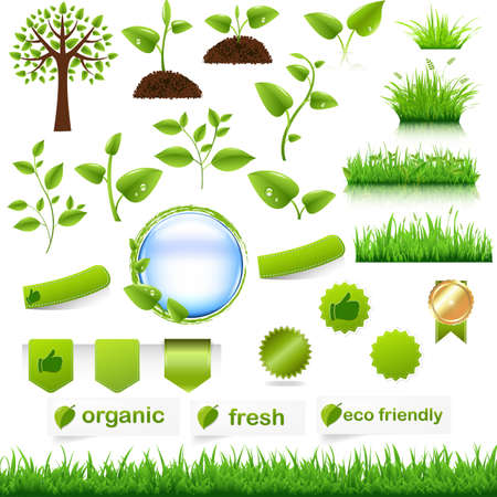 hedges: Green Eco Set, Isolated On White Background, Vector Illustration  Illustration