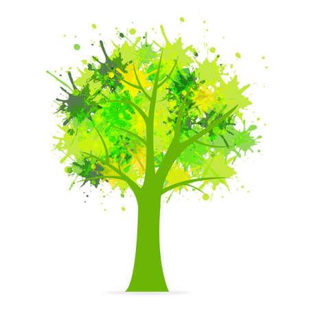 arboles frondosos: Árbol de Eco, aislados en fondo blanco, fondo Vector