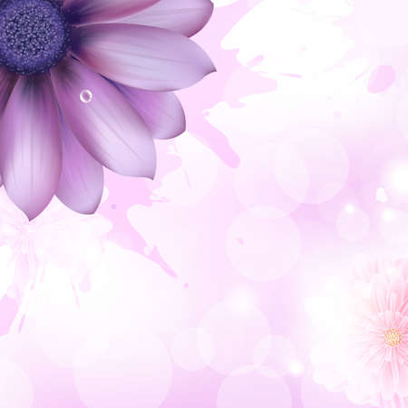 daises: Lilac Gerbers And Paint Splash, Vector Background