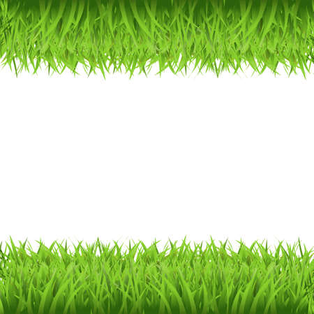 leaf water drop: Green Grass Frame, Isolated On White Background, Vector Background Illustration