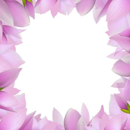 magnolia tree: Magnolia Frame, Vector Illustration