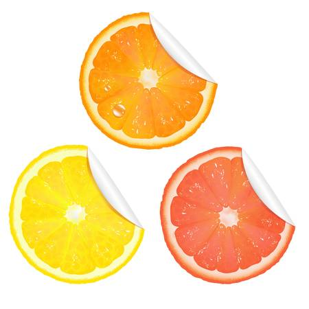 3 Citrus Stickers, Isolated On White Background, Vector Illustration Vector