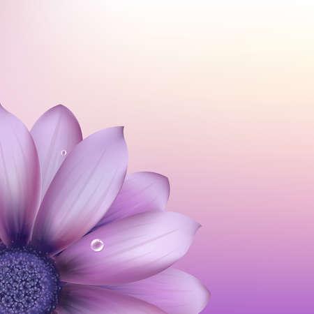gerber: Fresh Purple Gerber