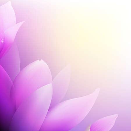 Pink Magnolia Vector