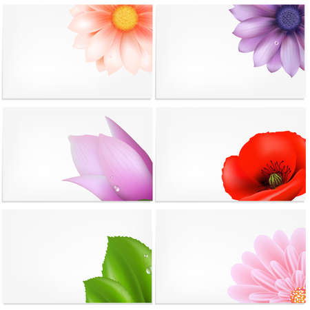 scent:  Set Of Greeting Cards With Flowers