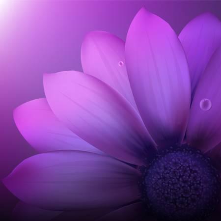 Fresh Violet Gerber Vector