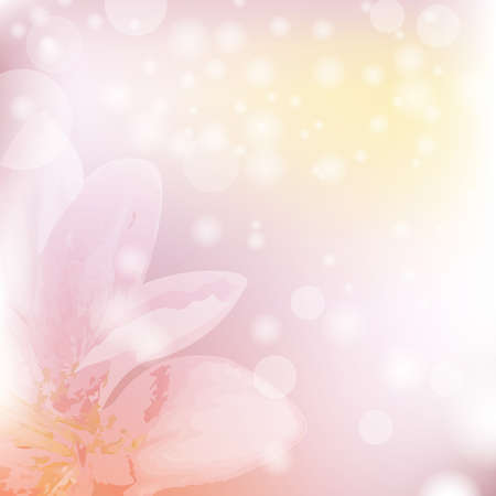 Floral Background With Blooming Lilies, Vector Illustration  Vector