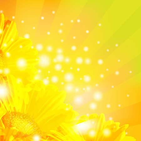 gerber: Orange Gerber With Sunburst And Blur, Vector Illustration