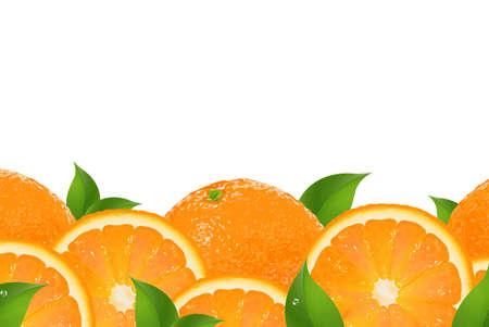soda splash: Slices Of Orange Border, Isolated On White Background Illustration