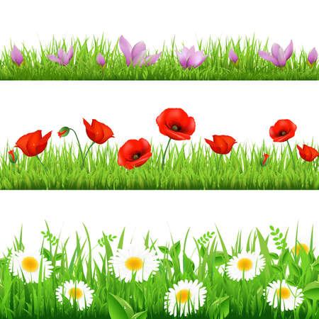 grens: 3 Flower Border Met Gras, Geà ¯ soleerd Op Witte Achtergrond, Vector Illustratie